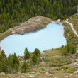 Hiking route near Zermatt — Stock Photo #7122860