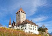 Spiez castle — Stock Photo