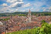 Summer in Schaffhausen — Stock Photo