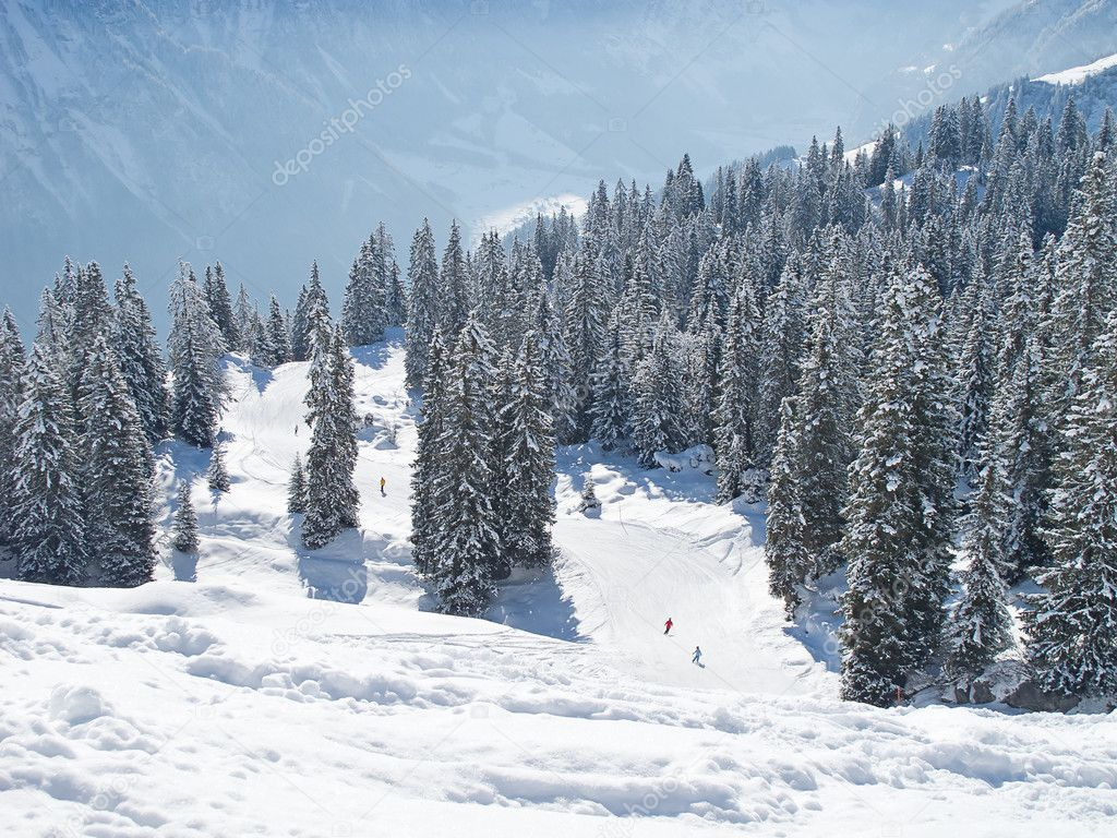 Winter in the swiss alps (Flumserberg, St.Gallen, Switzerland)  Stock Photo #7337130