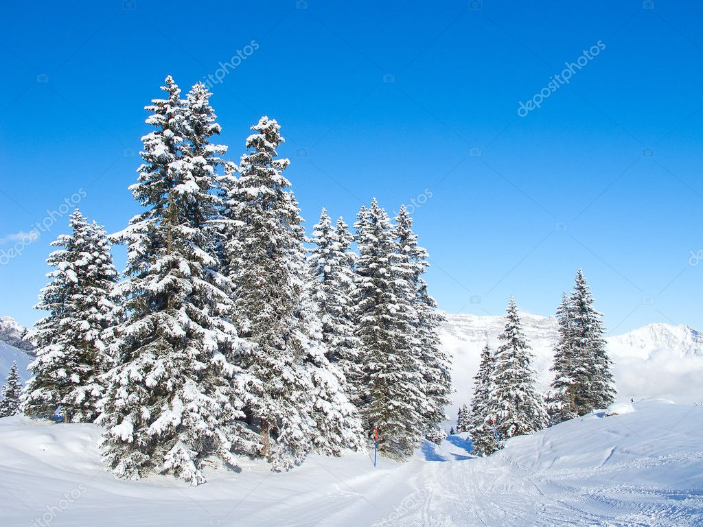 Winter in the swiss alps (Flumserberg, St.Gallen, Switzerland) — Stock Photo #7337689