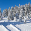Winter in alps — Stock Photo #7793310