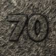Stock Photo: Stone number seventy