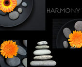 Collage harmonie — Stockfoto