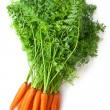 Big bunch of fresh carrots with green tops — Stock Photo