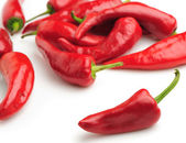 Red bitter pepper — Stock Photo