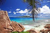 Marvellous beach - Seychelles — Stock Photo