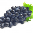 Grape fruit — Stock Photo