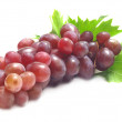 Stock Photo: Grape fruit
