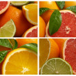 Citrus fruits — Foto de stock #7002102