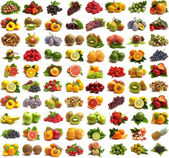 Collection fruits — Foto Stock