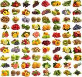 Frutos de coleção — Foto Stock