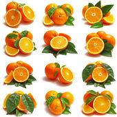 Orange frukter — Stockfoto