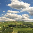 Hills of Piedmont. Northern Italy. — Stock Photo