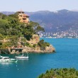 View on small town of Portofino, Italy. — Stock fotografie