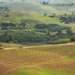 Hills and vineyards of Piedmont. Northern Itaky. — Stock Photo #7847191