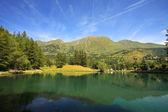 Alpine lake. Alps, Italy. — Stock Photo