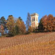 Hills and vineyards of Piedmont at fall. Northern Italy. — Stock Photo #7925095