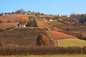 Colinas y viñedos de piamonte en otoño. norte de italia. — Foto de Stock