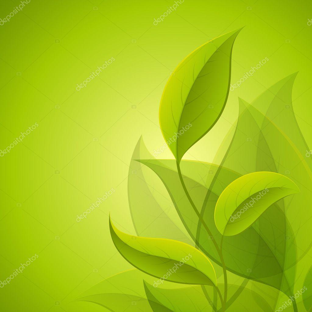 绿色的树叶 — 图库矢量图像08