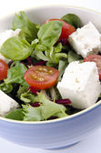 Greek salad with goat cheese in a bowl ready to eat — Stock Photo