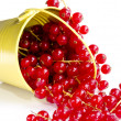 Yellow metal bucket with freshly picked red currant — Stock Photo