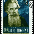 Vintage postage stamp.  Otto Schmidt. - Stock Photo