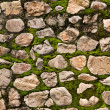Stone & Moss textured wall — Stock Photo