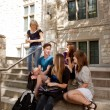 Group of Students — Stock Photo #6808086
