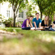 Happy Students on Campus - Stock Photo