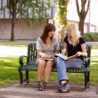 University Girls Studying Outdoors — Stock Photo