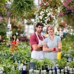 Florists at greenhouse — Stock Photo