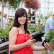 Woman with tablet pc and potted plant — Stock Photo