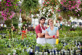 Florists at greenhouse — Stock Photo