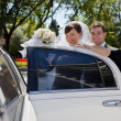 Bridge and Groom entering Limo - ストック写真