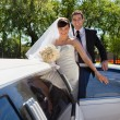 Wedding Couple with Limousine - Stock Photo