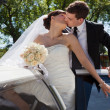 Wedding Couple Kiss — Photo