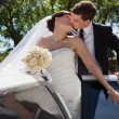Wedding Couple Kiss - Stock Photo