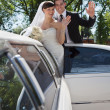 Wedding Couple Waving — 图库照片