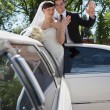 Wedding Couple Waving — Stock fotografie