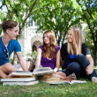Students on campus ground — Stock Photo