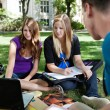 Students studying together — Stock Photo #6961199