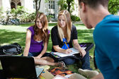 Students studying together — Stock Photo