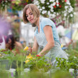 Woman spraying water on plants — Stock Photo