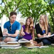 Group of students studying together — Stok fotoğraf