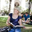 Royalty-Free Stock Photo: Students on Campus
