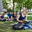 Stock Photo: College students studying