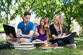 Group of students studying together — Foto Stock