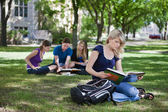 College students studying — Stock Photo