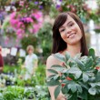 Attractive female customer holding potted plant — Stock Photo
